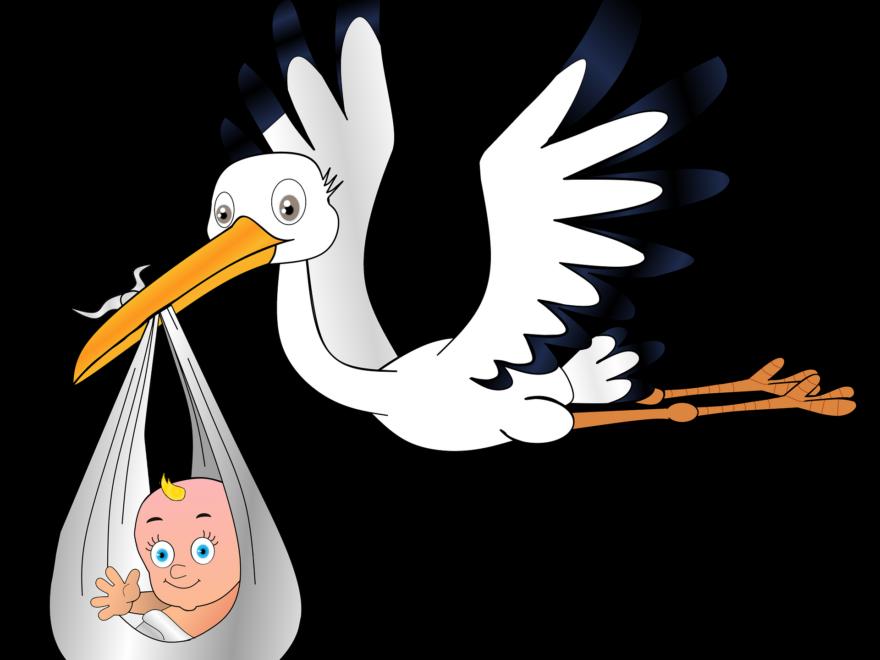 Der Storch bringt das Kind